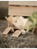 Bomba de semillas en tela de saco variadas