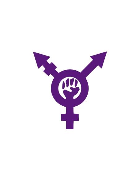 Transfeminismos. Epistems, fricciones y flujos