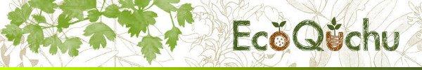 Regalos ecológicos. Kit de siembra, bombas de semillas