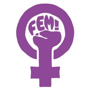 FEM - Camisetas feministas